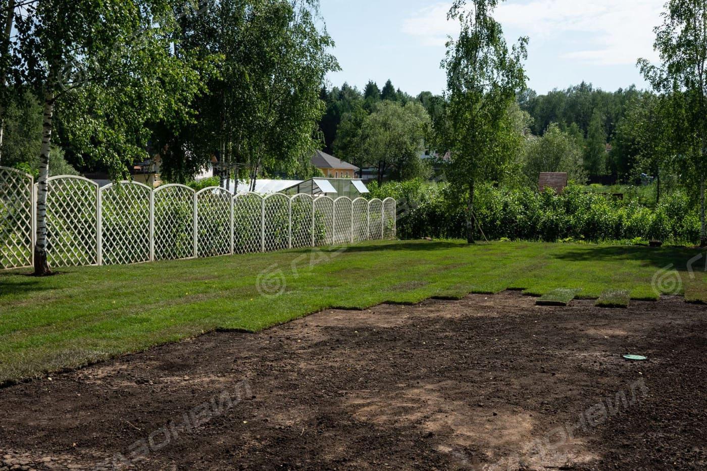 Партерный рулонный газон слайдер 2
