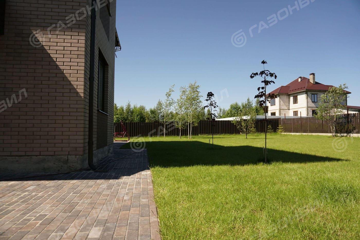 Низкорослый (карликовый) газон слайдер 4