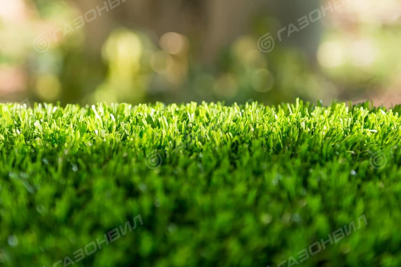 Засухоустойчивый газон слайдер 2