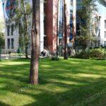 Устройство посевного газона под ключ в Жуковском навигация слайдера 1