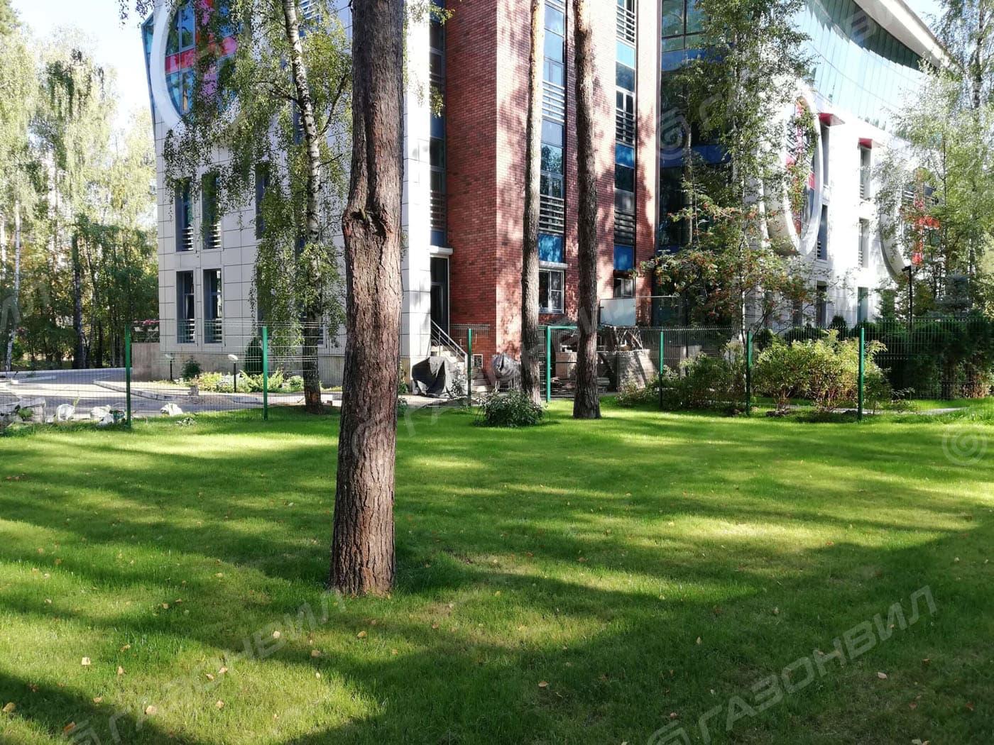 Устройство посевного газона под ключ в Жуковском слайдер 1