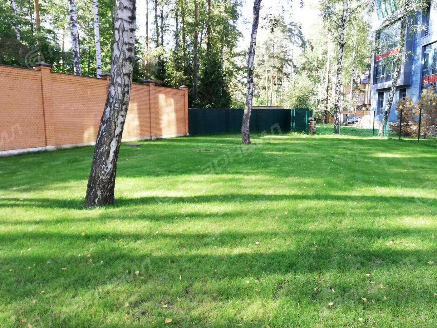 Устройство посевного газона под ключ в Жуковском слайдер 2