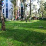 Устройство посевного газона под ключ в Жуковском навигация слайдера 3