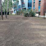 Устройство посевного газона под ключ в Жуковском навигация слайдера 8