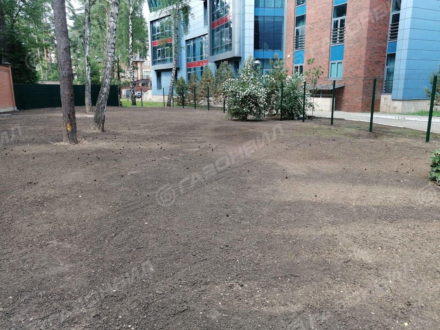 Устройство посевного газона под ключ в Жуковском слайдер 8