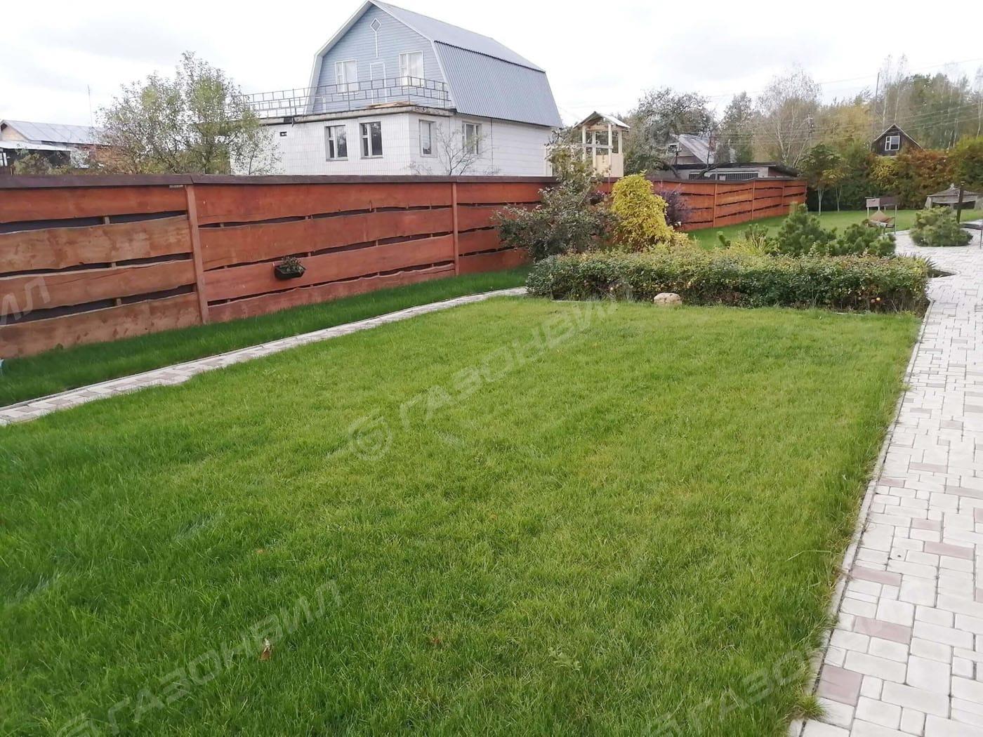 Устройство посевного газона под ключ в Москве слайдер 3