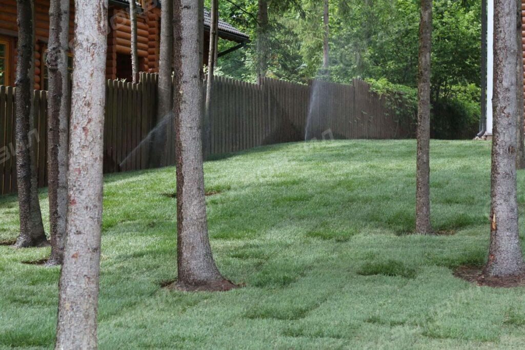 Автоматический полив газона на даче
