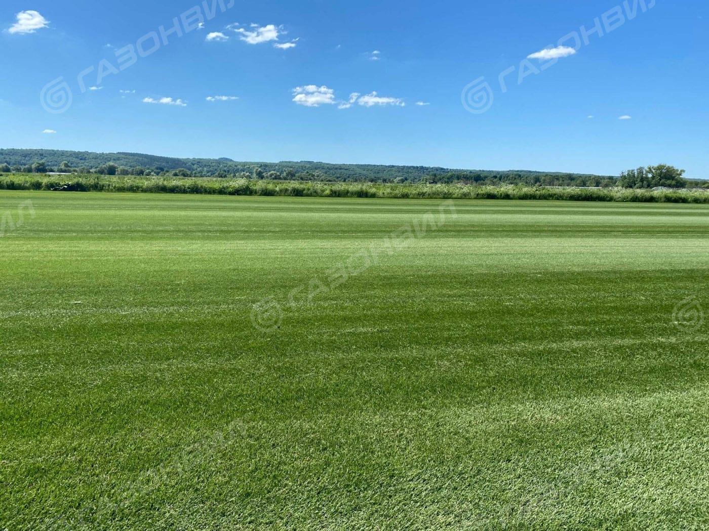Спортивный рулонный газон слайдер 4